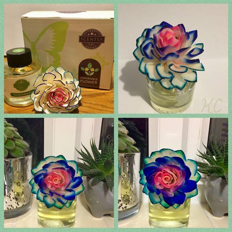 Fragrance flower in 2020 fragrance packaging fragrance