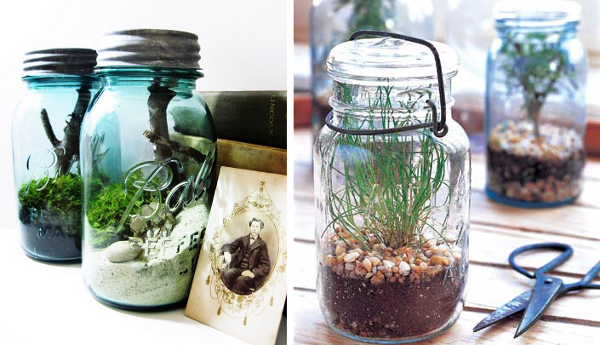 Turn old jars into a terrarium or an herb garden! Terrariums pictured sold by Doodle Birdie. For a tutorial on how to create your own herb garden, check out Better Homes and Gardens.