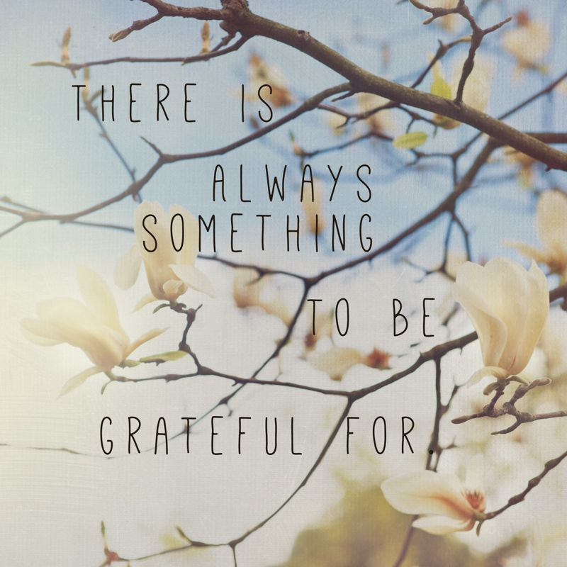 """There is always something to be be grateful for."" quote // Photo by North Tabor Photo / Portland, Or"