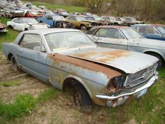 Own A Mustang Junk Yard Rustingmusclecars Com Barn Find Cars