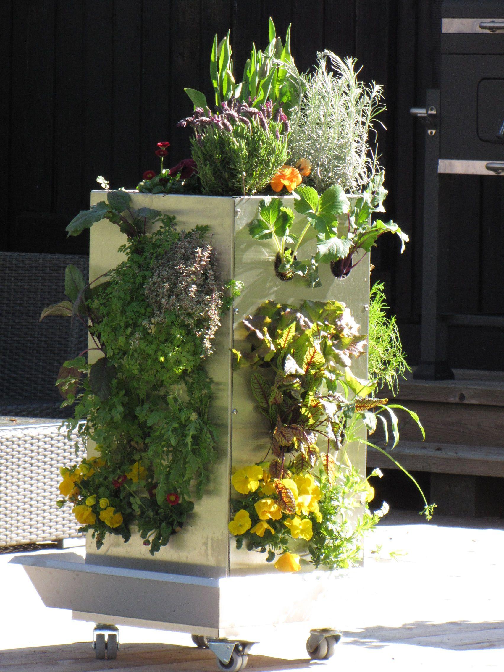 kubi ein ganzer garten auf 1m mit platz f r bis zu 50 pflanzen mit internem komposter der. Black Bedroom Furniture Sets. Home Design Ideas