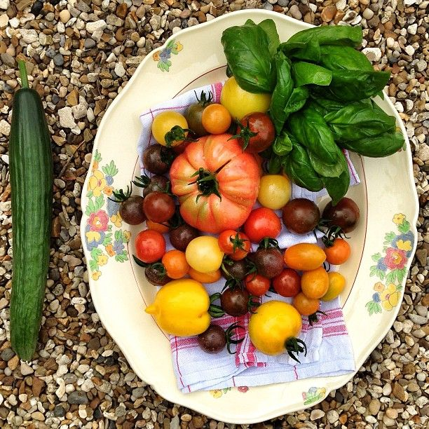 """Lunch Ideas Jamie Oliver: @Jamie Wise Oliver's Photo: """"Nice Juicy Tomatoes Ready For"""