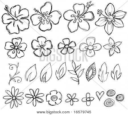 Stock Vector | Art Ideas | Flower doodles, Flower sketches, Tropical