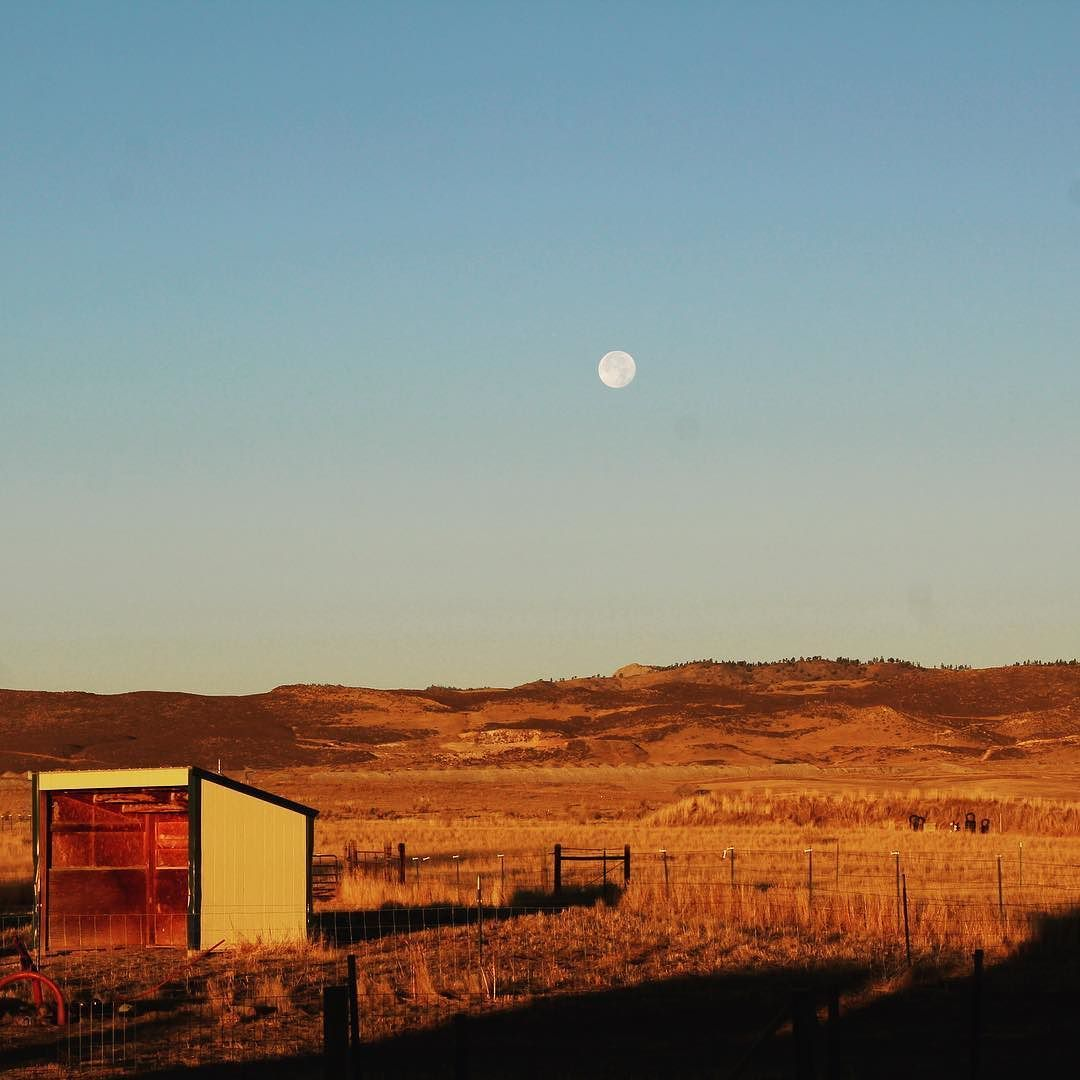 To the west.    #smallacrefarm #tothewest #sunrise #farmphotography #anotherday #farmlifebestlife #somedaysnowords #fortcollins #colorado