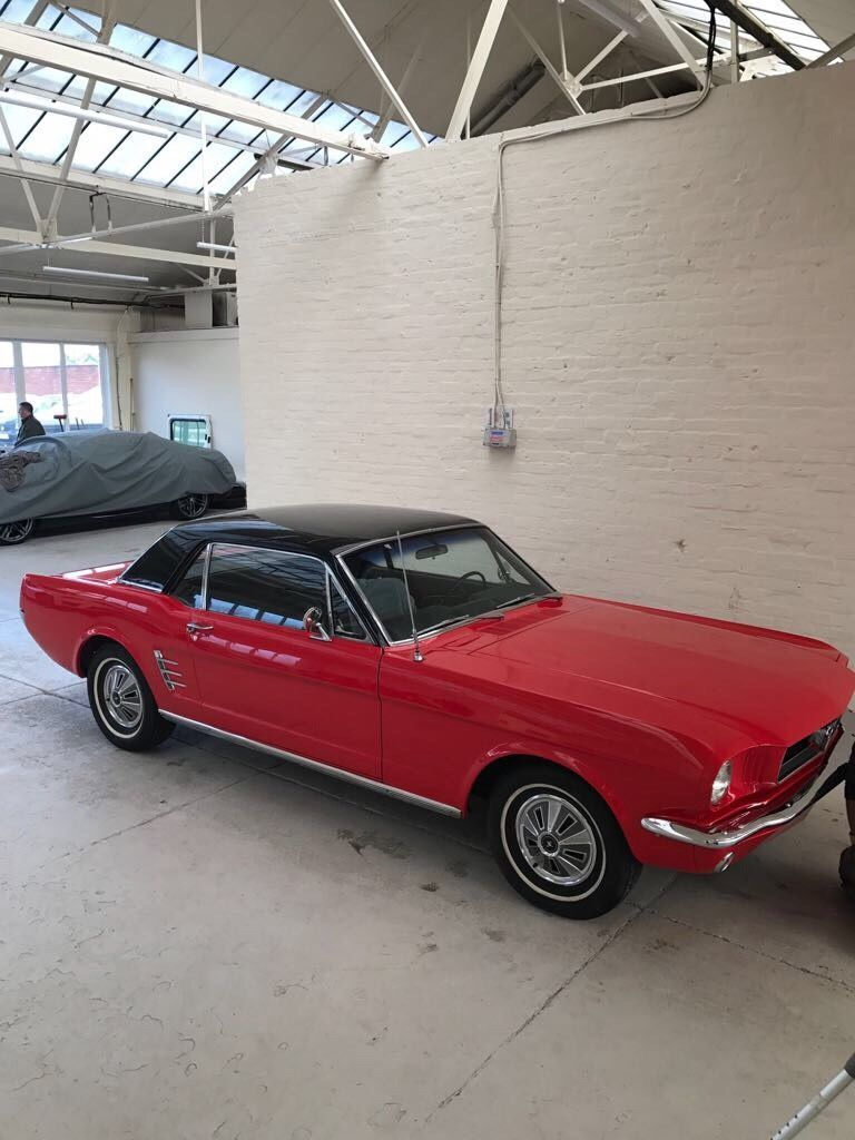 Looking For A 1966 Ford Mustang Coupe Brand New Paintwork Uk Registered This One Is On Ebay Mustang Coupe Ford Mustang Coupe 1966 Ford Mustang