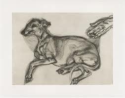 Lucien Freud, Pluto Aged Twelve, Etching, Museum of Modern Art New York