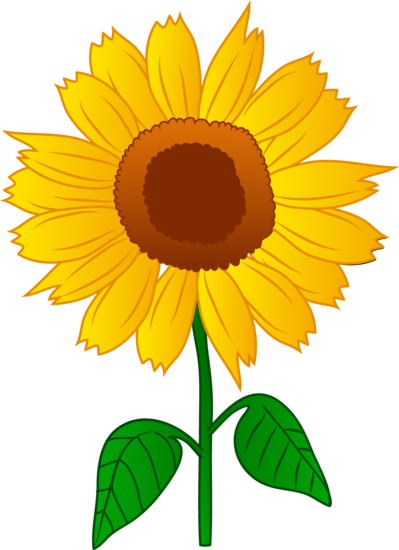 pretty golden sunflower flower pinterest sunflowers clip art rh pinterest com sunflower clipart transparent sunflower clipart images