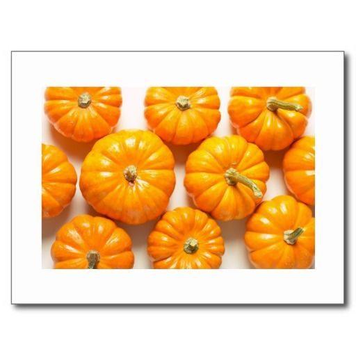 Small Pumpkins Save The Date Postcards