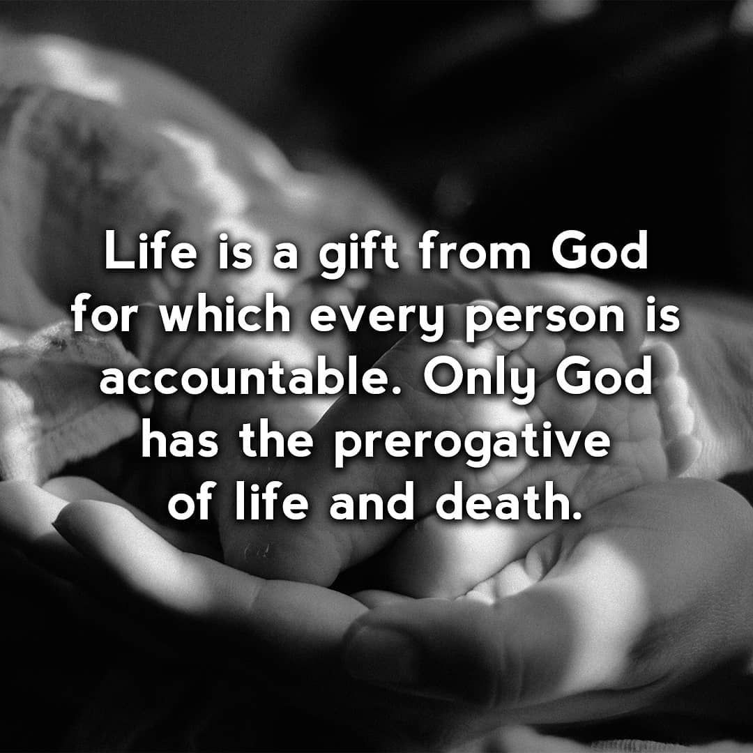 Pin by Rbc Church on Quotes | Life, Life is a gift ...
