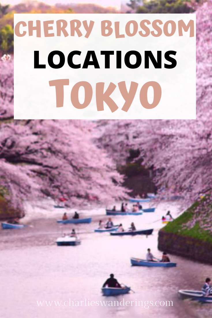 Spring Has Sprung How To Enjoy Spring In Tokyo 2020 Flip Guide Japan Travel Blossom Trees Enjoyment