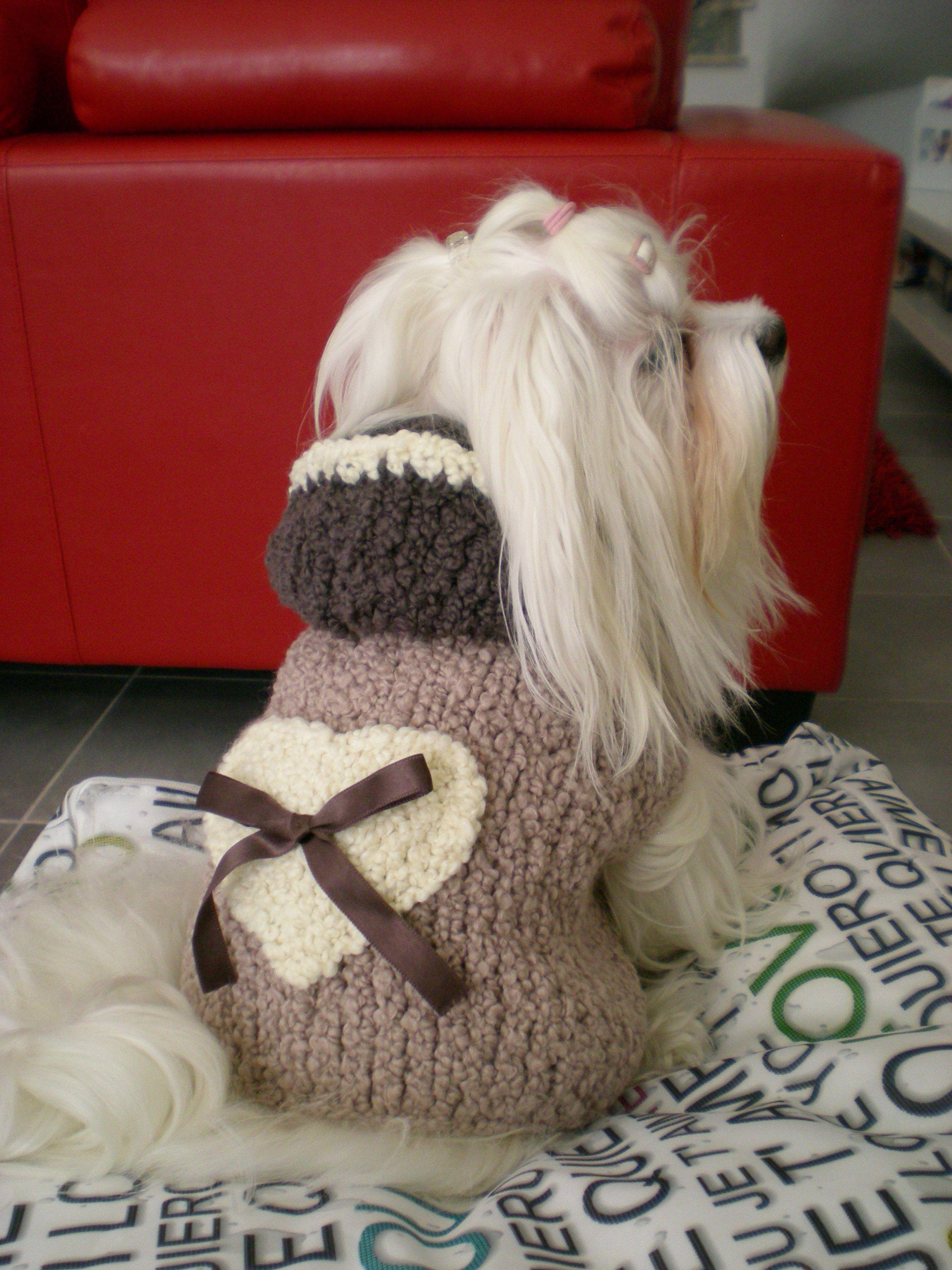 nuovo concetto a5103 1a5c8 Cappottini per cani fai da te ai ferri Pagina 2 ...