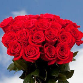 Wholesale Flowers 100 Red Roses Special - http://flowersnhoney.com/wholesale-flowers-100-red-roses-special/