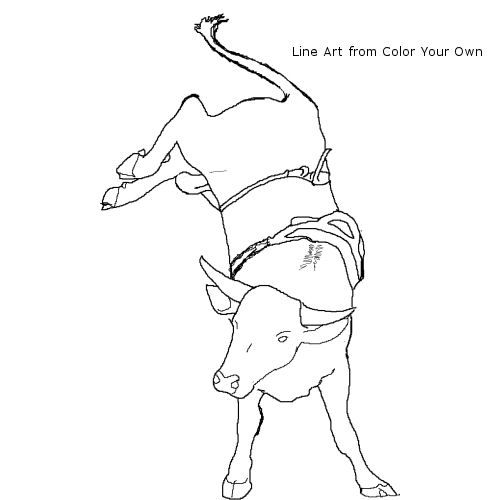Bucking Bull Coloring Page Learning