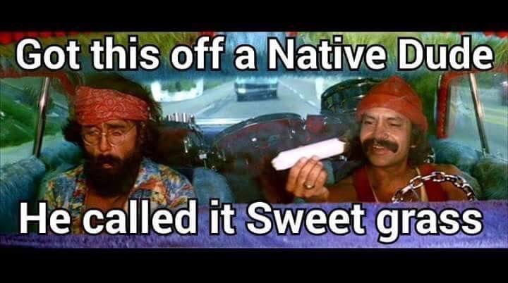 Cheech And Chong 420 Humor Humor