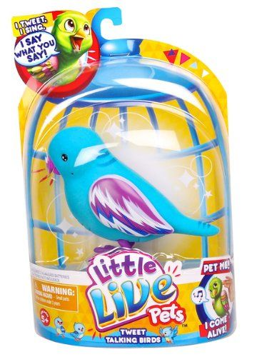 Little Live Pets Bird 5 Cool Cookie Single Pack Playset Little Live Pets Fun Cookies Pets