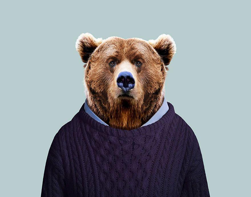 картинка бурый медведь в костюме белого неуравновешенной психикой