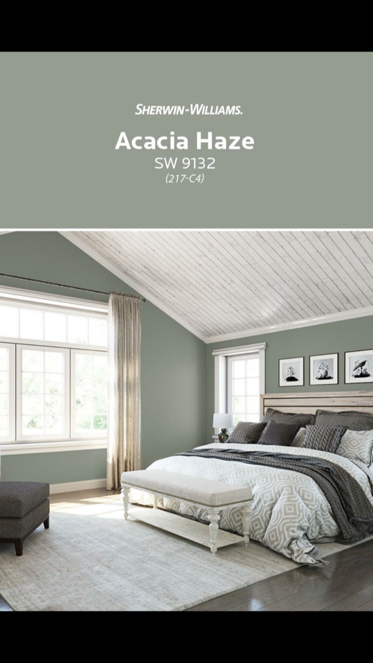 Acacia Haze Sherwin Williams For The Home In 2019