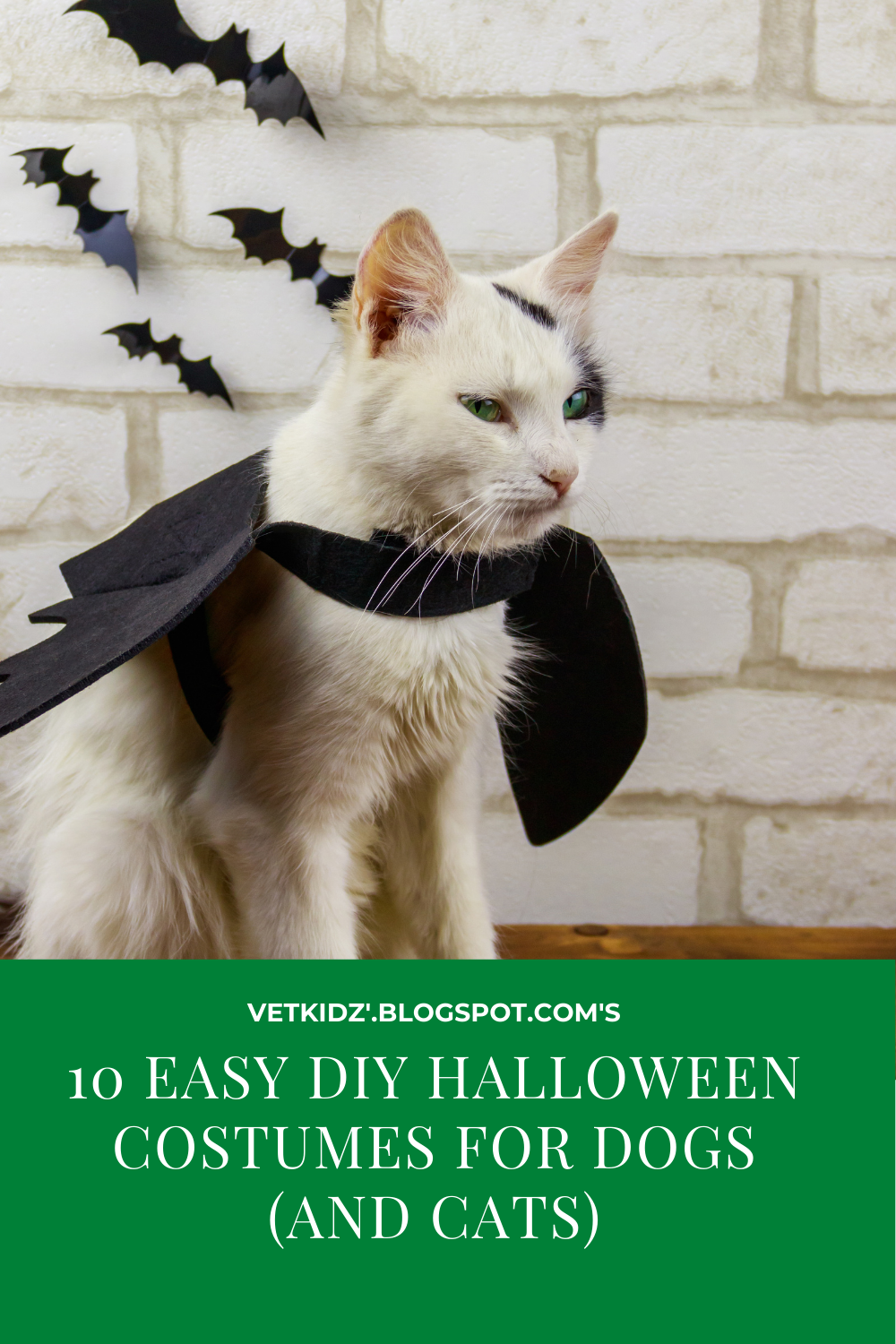 10 Easy DIY Halloween costumes for dogs (and cats) -   19 diy Halloween Costumes cat ideas