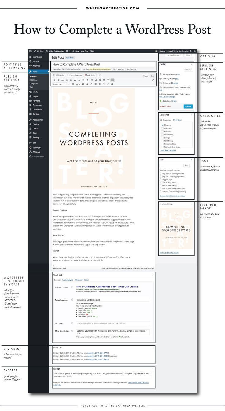 How to Successfully Complete a WordPress Post   Blog design, Anatomy ...