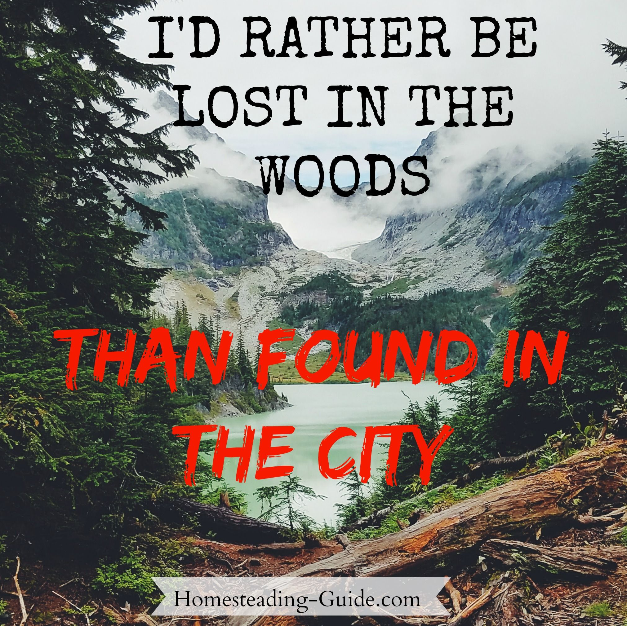 I Would Rather Be Lost In The Woods Than Found In The City Bushcraft Homesteading Quote
