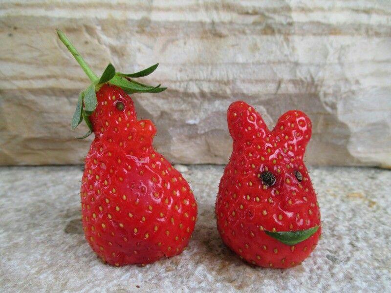 Nur kroatische Erdbeeren sind fancy genug zum spielen und schmecken noch super