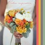 Colour Palette: Coral, Mustard Yellow, Grey & Deep Sage