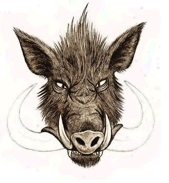 wild boar tattoo design for men tatuajes spanish tatuajes rh pinterest com wild boar skull tattoos wild boar skull tattoos