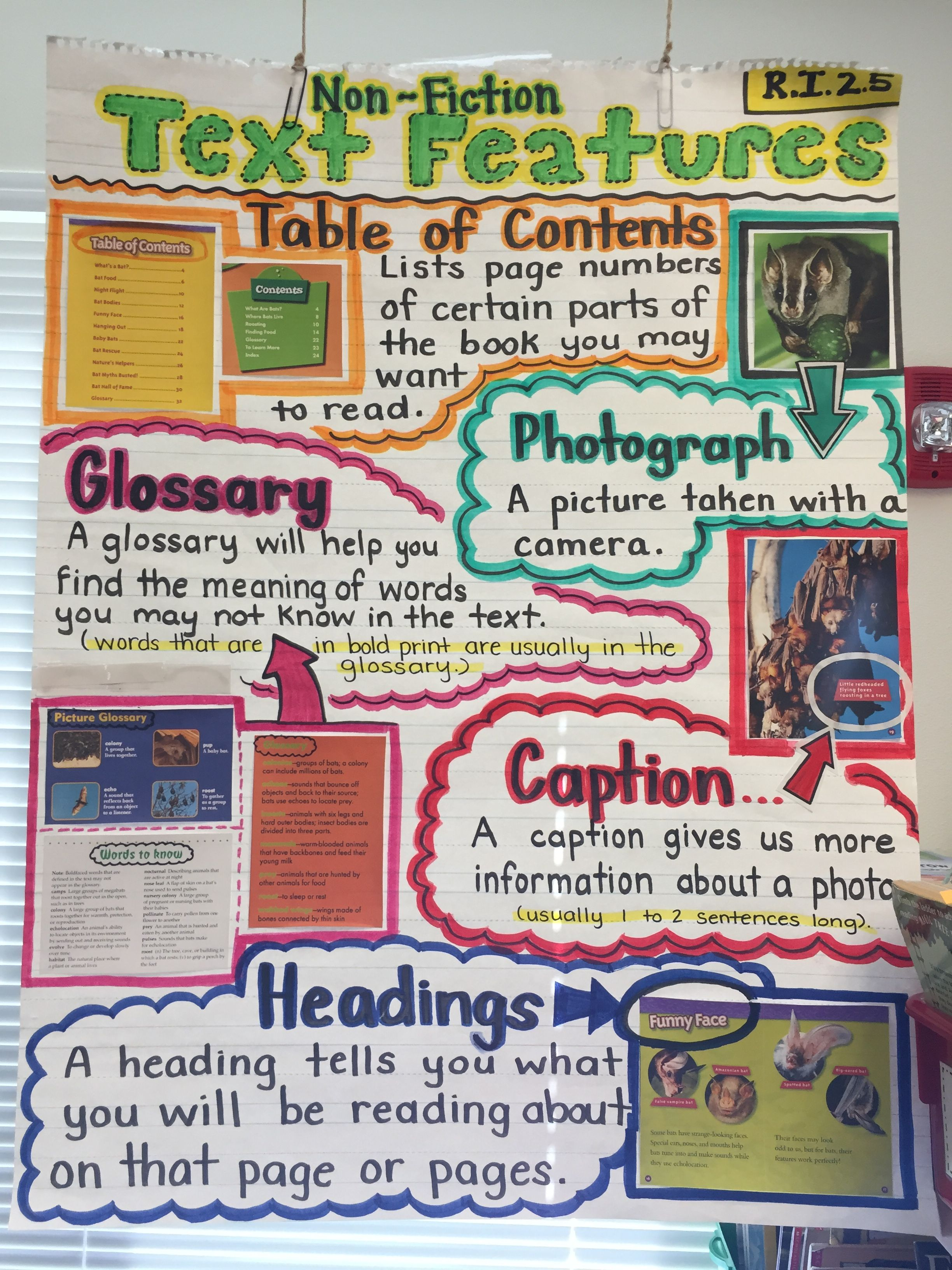 Ri 2 5 Text Features Anchor Chart By B Feliciano With