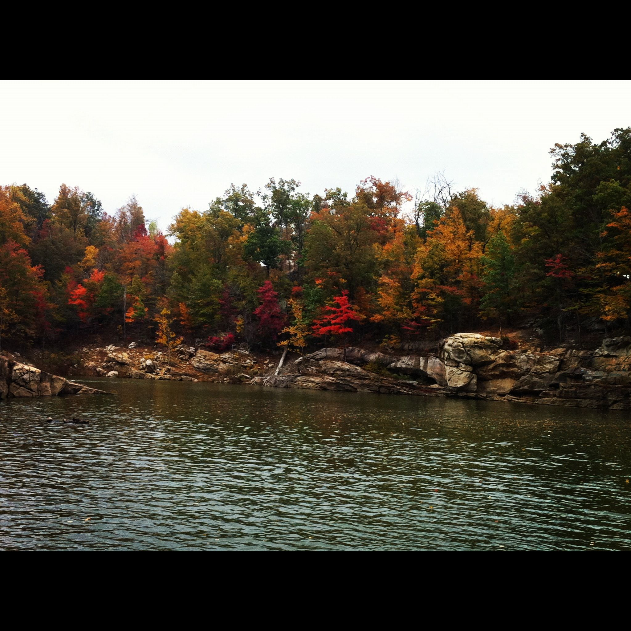 fall at rough river ky rough river dam state resort