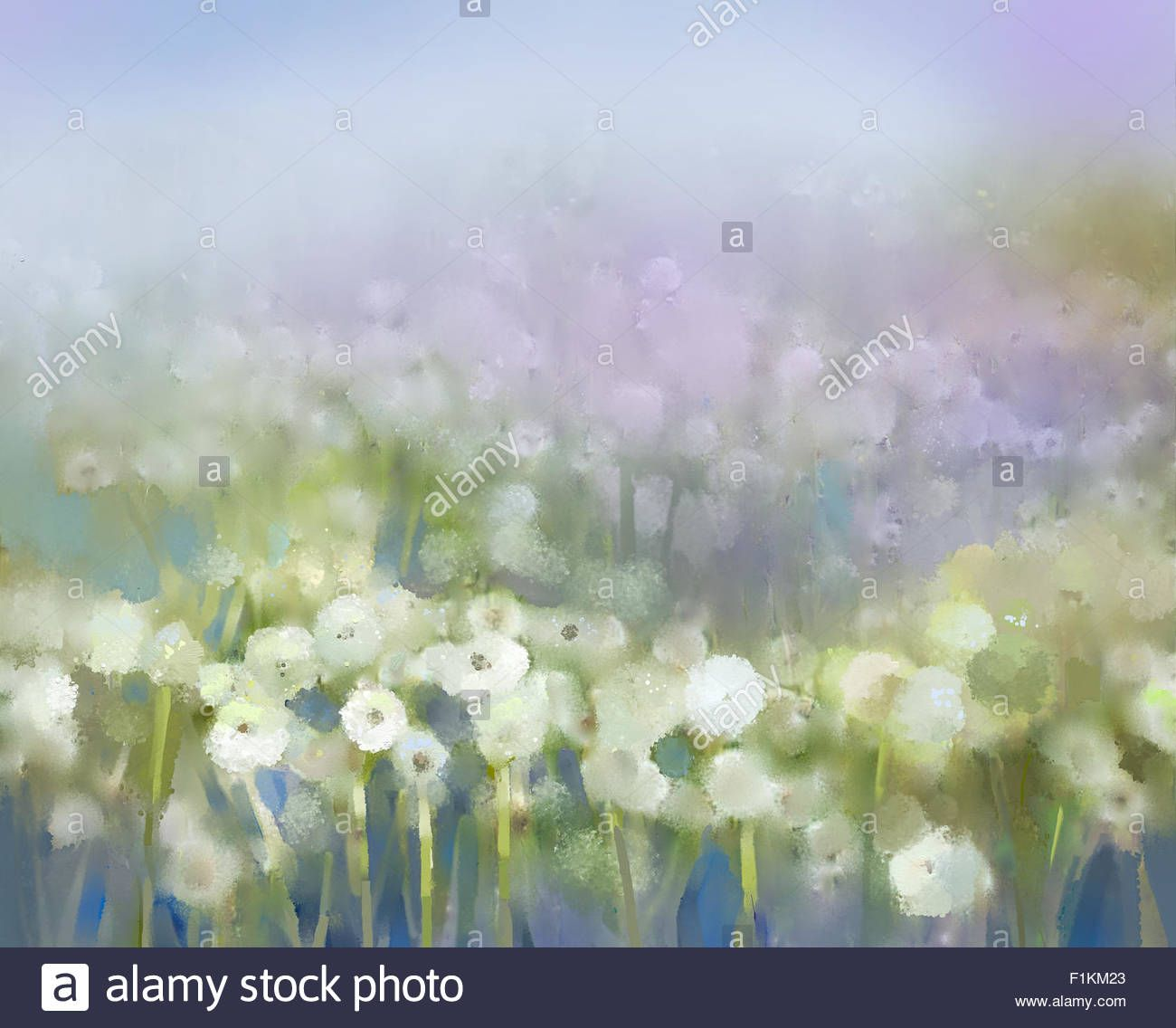 Abstract Oil Painting White Flowers Field In Soft Color Oil Stock