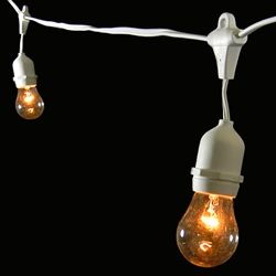 Commercial Grade Drop String Lights, 10 Clear Bulbs, 21 ft. WHITE Wire