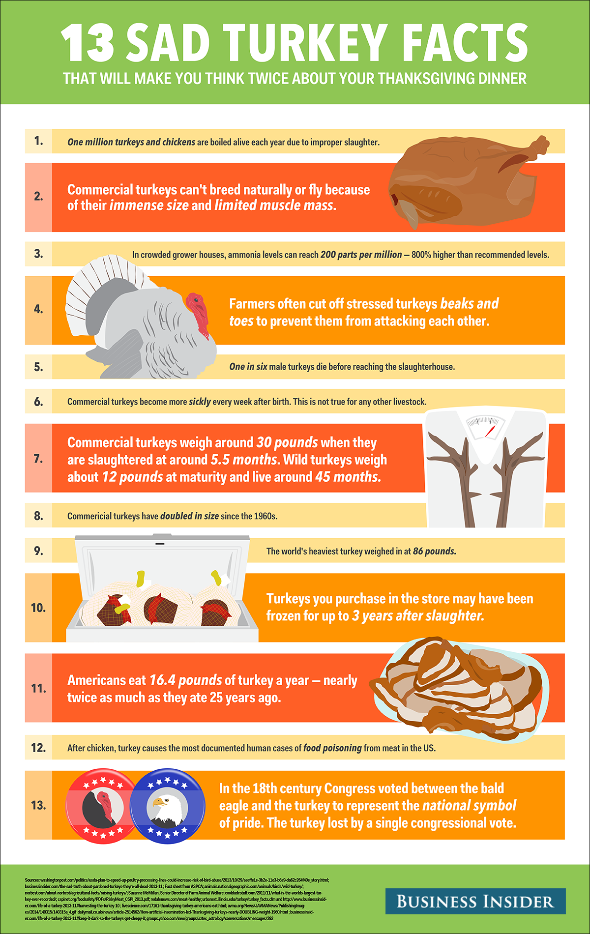 13 Sad Sad Facts About Your Thanksgiving Turkey