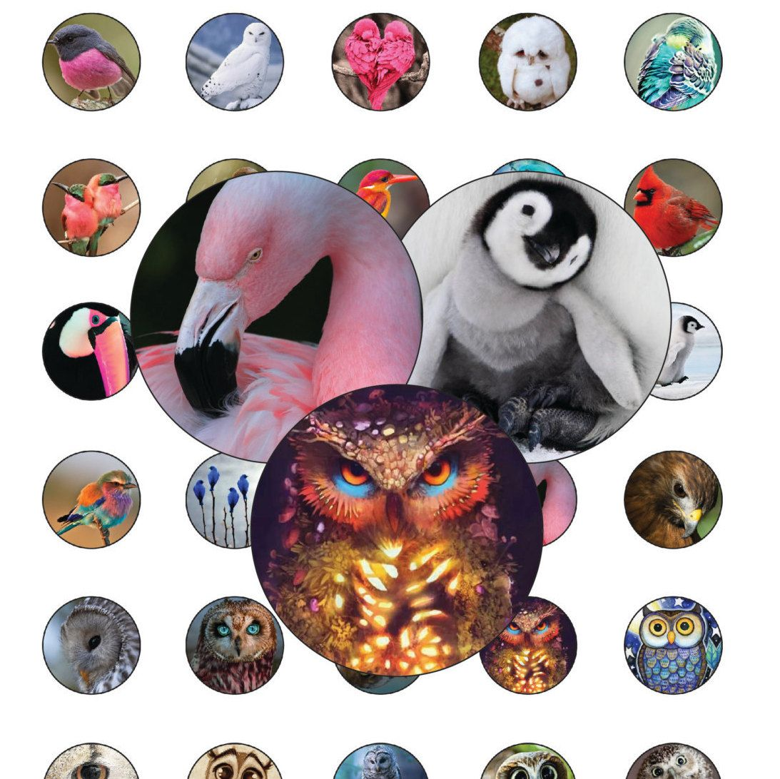30 Birds Digital Party Stickers Circles size 1'', 20mm, 16mm, 14mm, 12mm sheet…