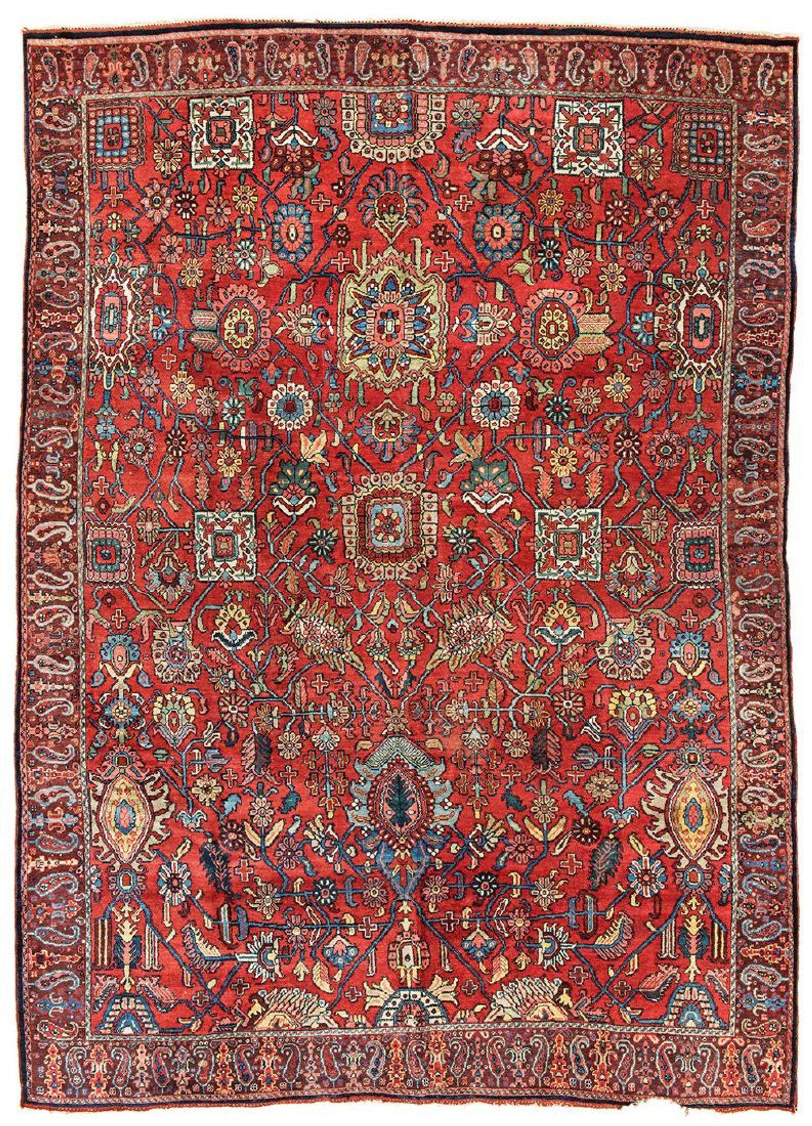 Carpet Maitland Area
