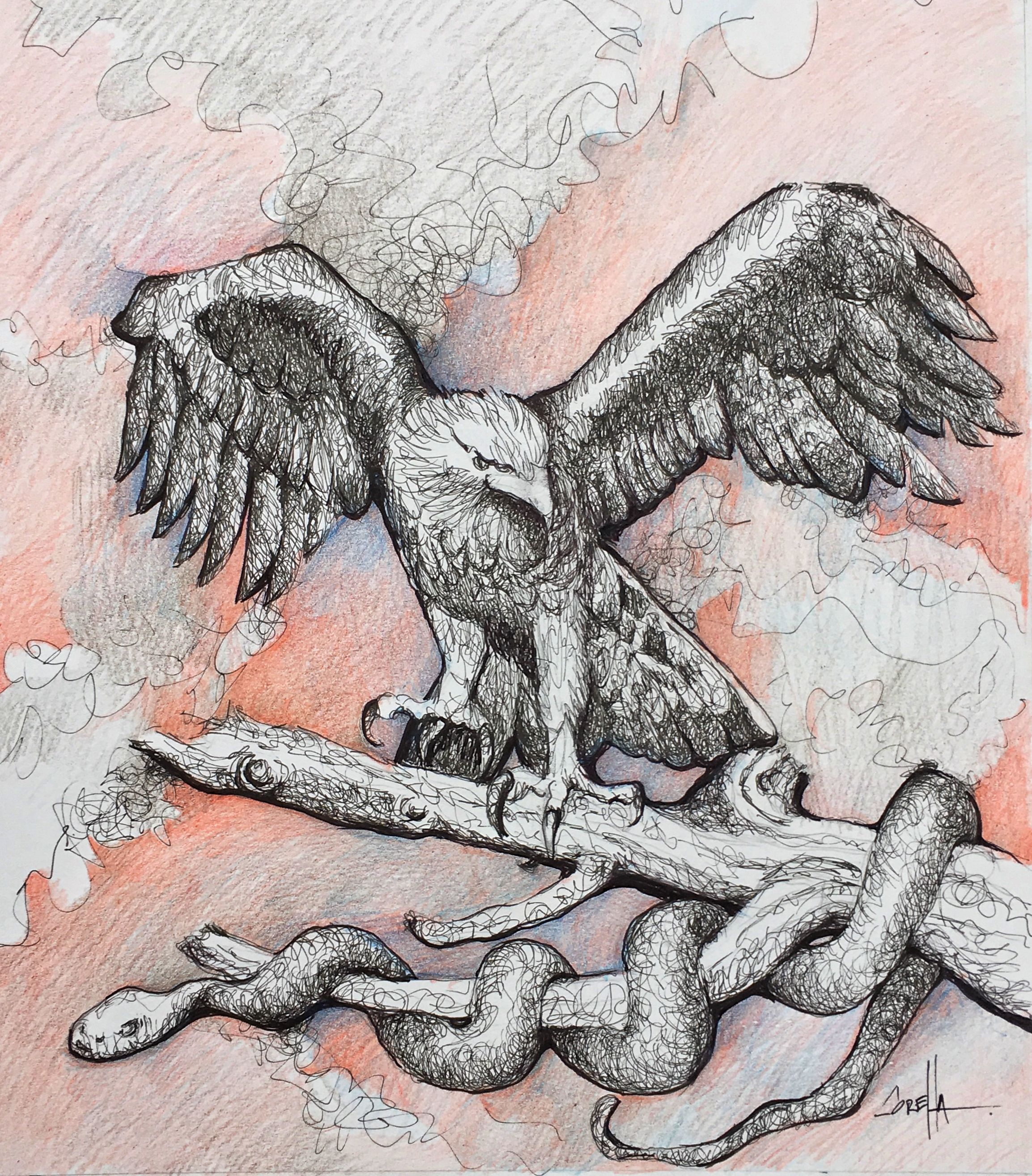Aguila Y Serpiente Artline Y Lápiz De Color Dibujos Sketches Y Art