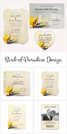 Bird of Paradise Wedding and Events
