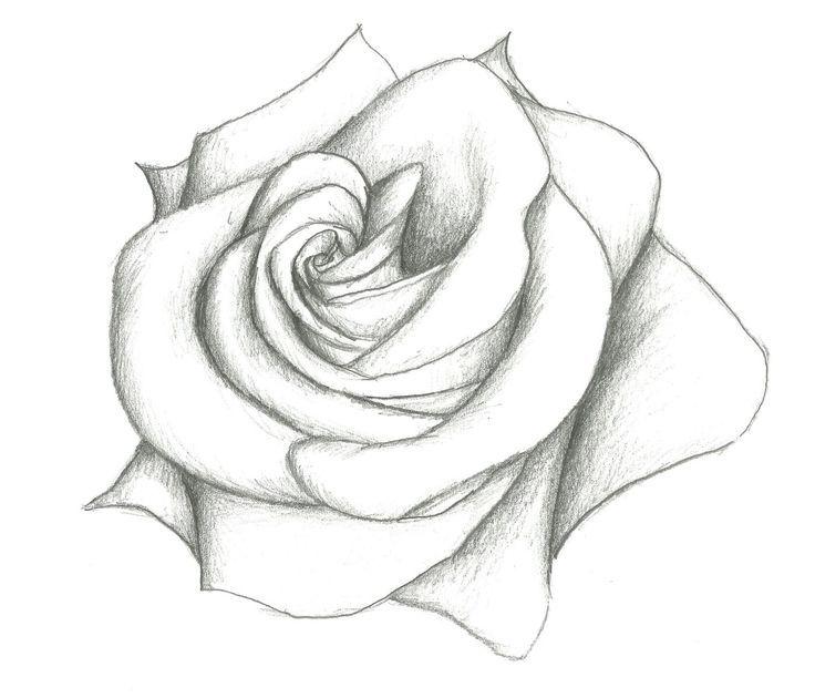 Resultado De Imagem Para Desenhos Flores Tumblr Com Imagens