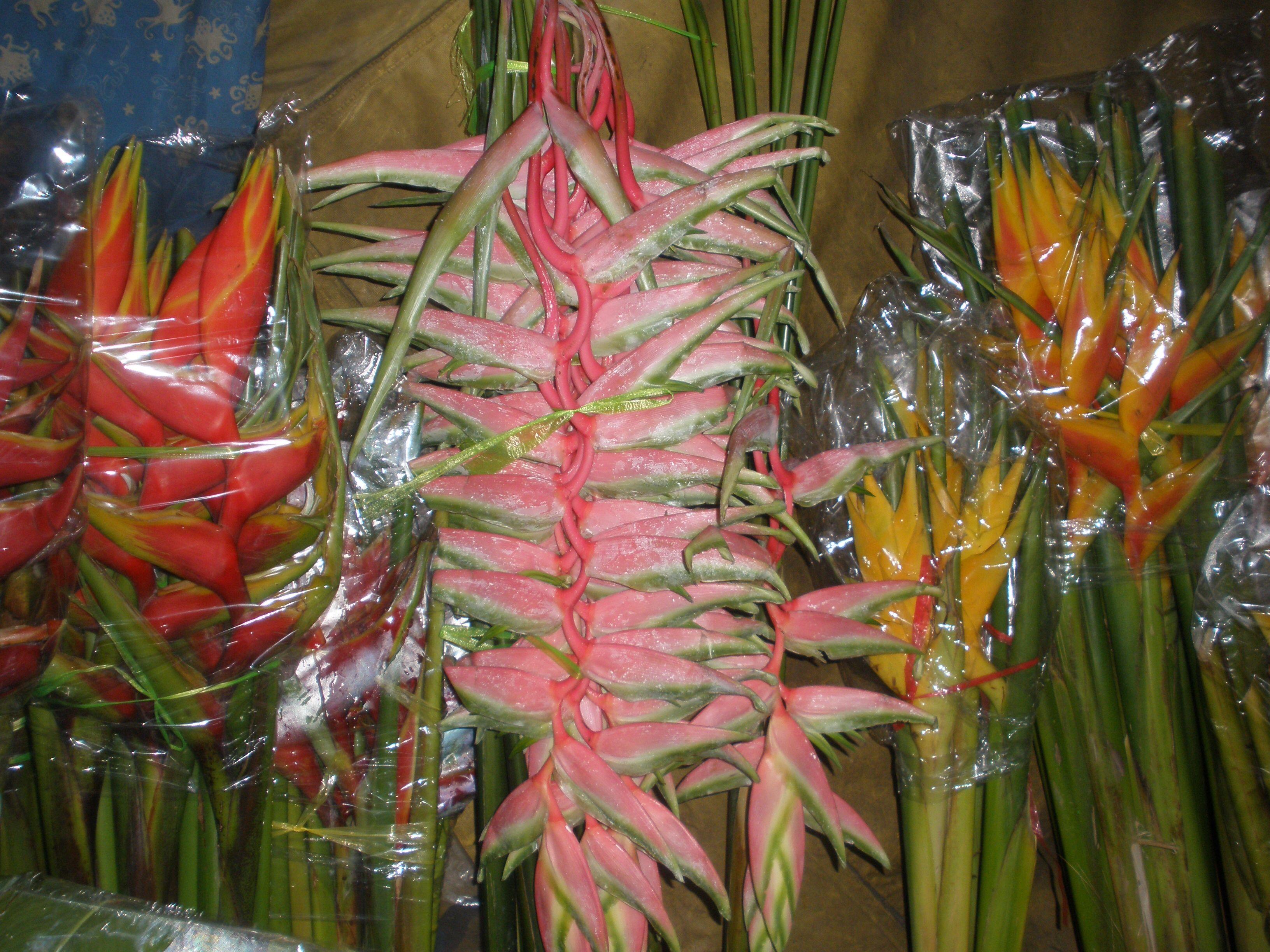 Bloemenmarkt in manilla