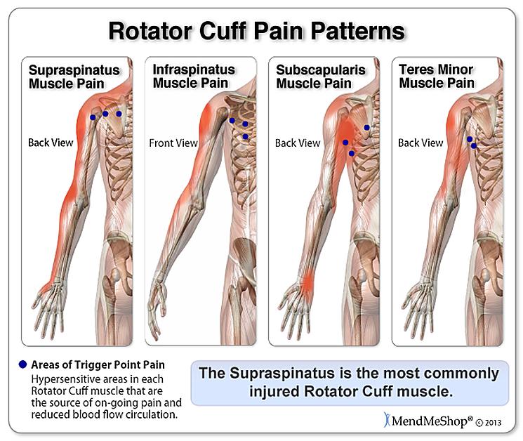 Santa Barbara Massage And Bodywork Balance In Motion Rotator