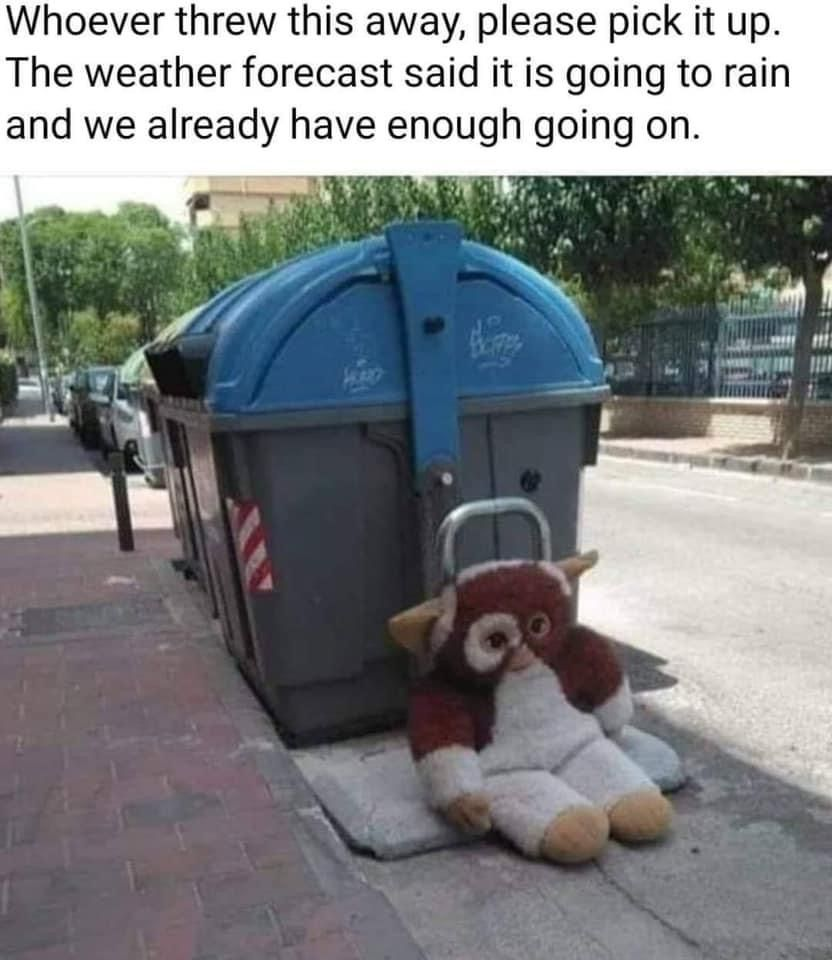 Gremlins Not In 2020 Funny Pictures Bones Funny Going To Rain