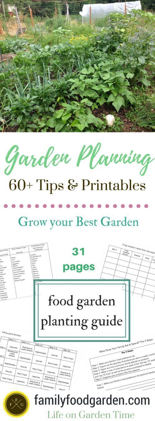 Garden Planning 60 Tips to Grow your Best Garden Family Food