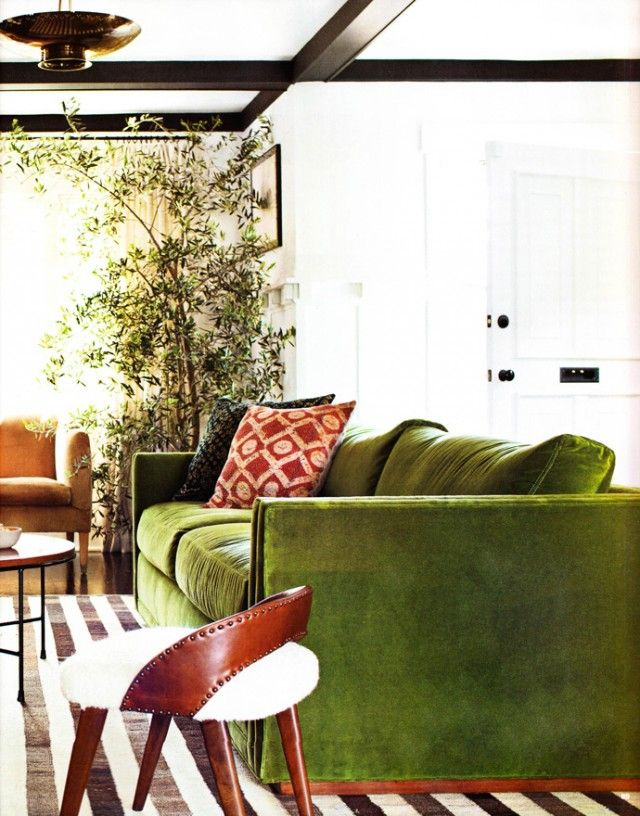 The Great Green Sofa Honestly Wtf Living Room Green Green Sofa Living Room Plants