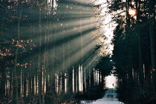 Hermosa luz