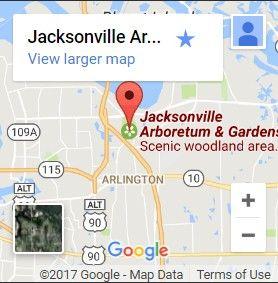 Aralia Trail | Jacksonville Arboretum & Gardens