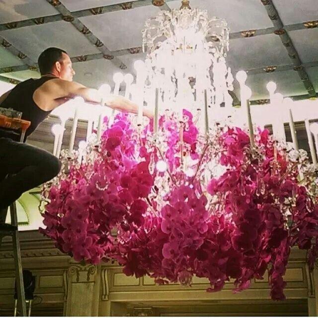 Jeff leatham orchid chandelier | Floristry | Pinterest ...
