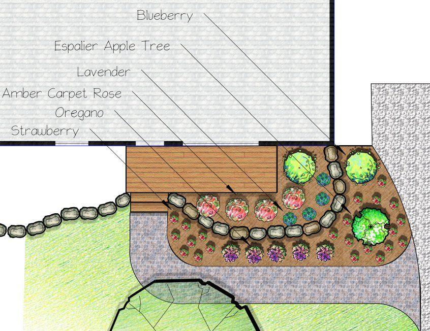 Edible Landscape Sample Plan Edible Landscaping Edible 400 x 300