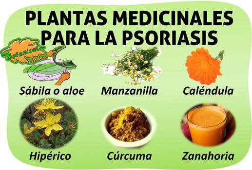 Plantas Medicinales Y Remedios Para Tratamiento Natural De La Proriasis Dieta Para La Psoriasis Plantas Medicinales Hierbas Curativas