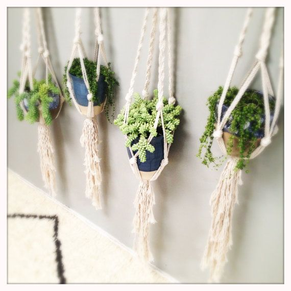 #pothanger #macrame #plant #hanger #Trend #Intratuin