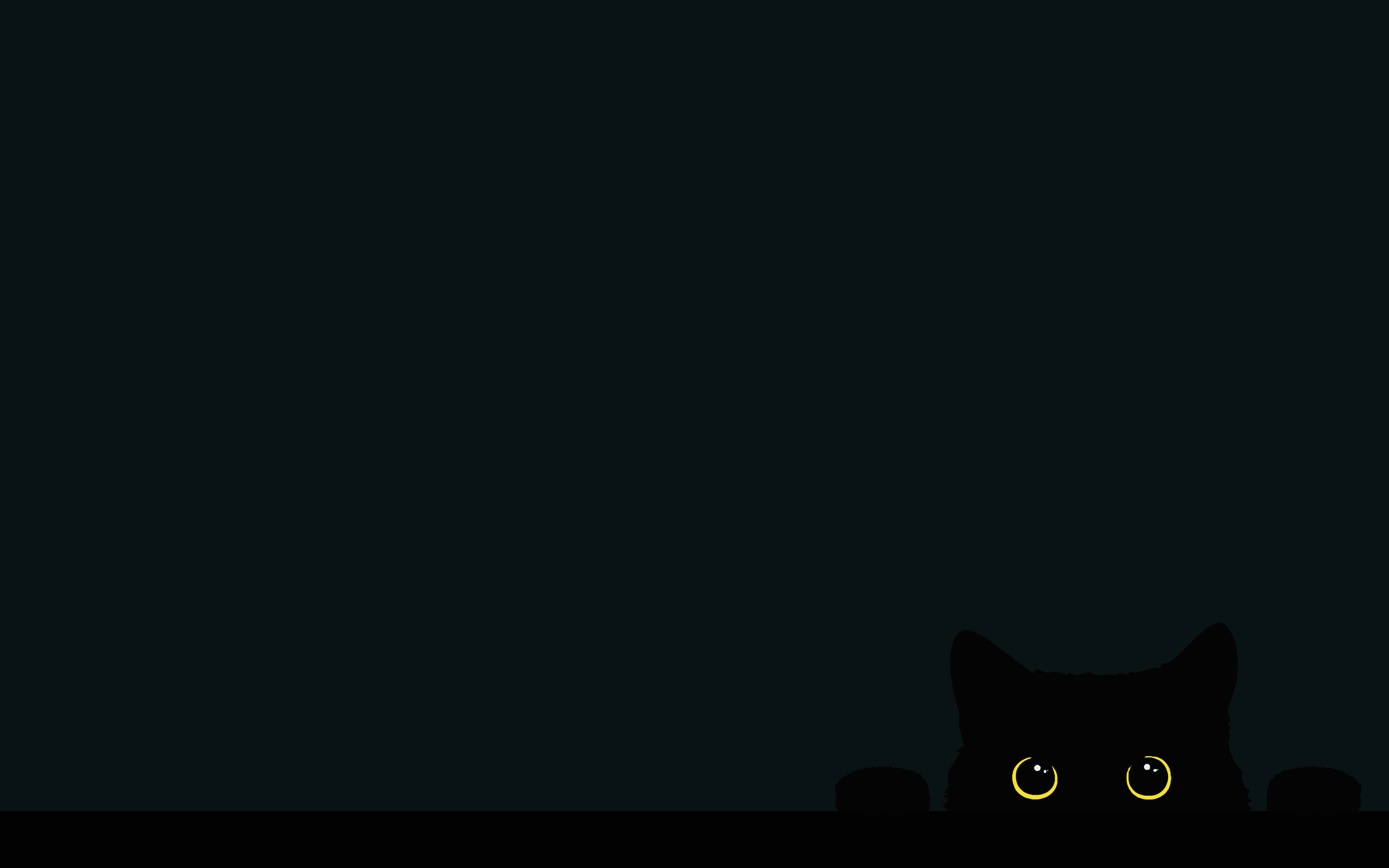 My Cat At 5am On The Edge Of The Bed 2880x1800 In 2020 Wallpaper Dekstop Laptop Wallpaper Desktop Wallpapers Cat Wallpaper