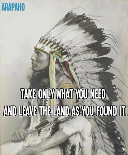 Cherokee Indian Quotes Httpswww.facebooknativeindianwisdomphotos_Stream  Worth .